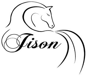 Jison Hästar